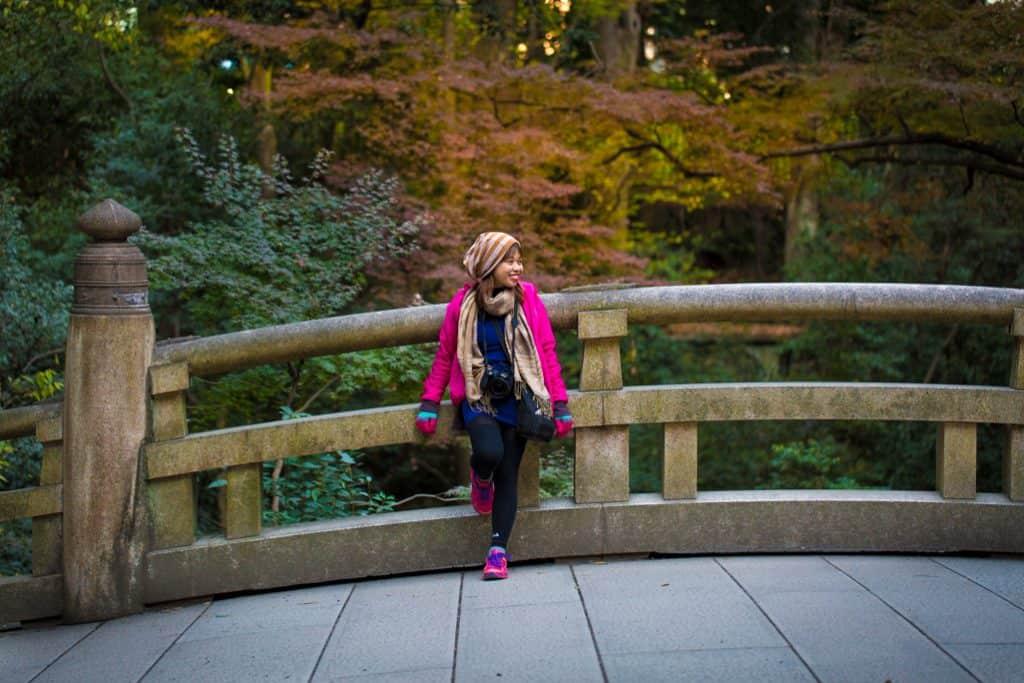 japan autumn season 02