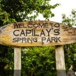 Capilay's Spring Park – Just Passing By