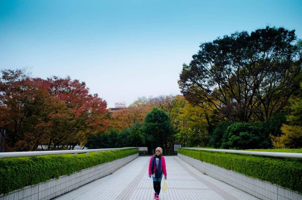 Autumn Tokyo Japan 9
