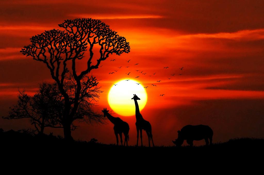 Safari Holiday giraffe